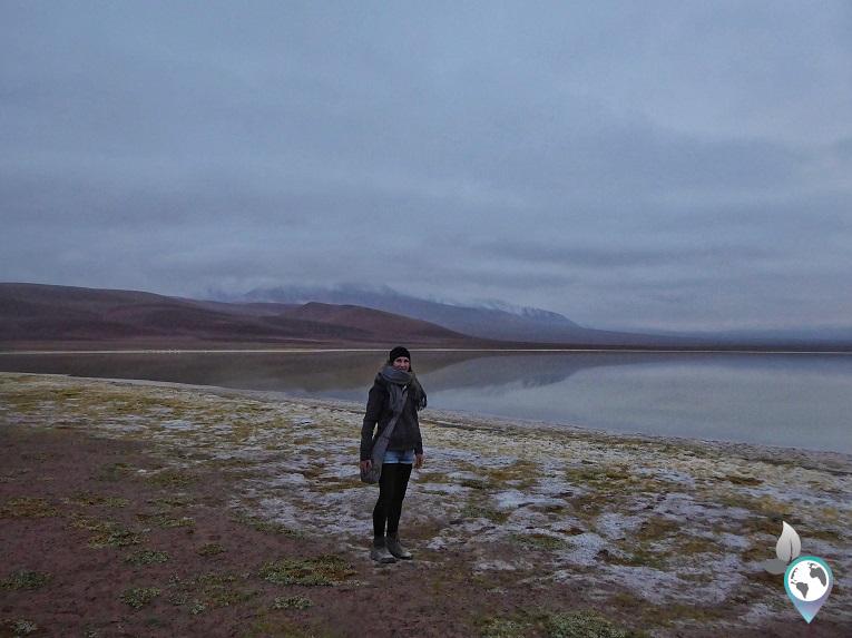 Morgens um 7 Uhr an der Laguna Leija - hinter schmetterlinga theoretisch der Vulkan Lascar, Chile, www.schmetterlinga.de