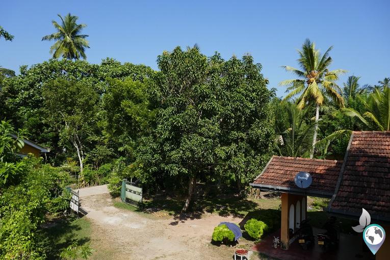 Ausblick vom Dach des Resorts