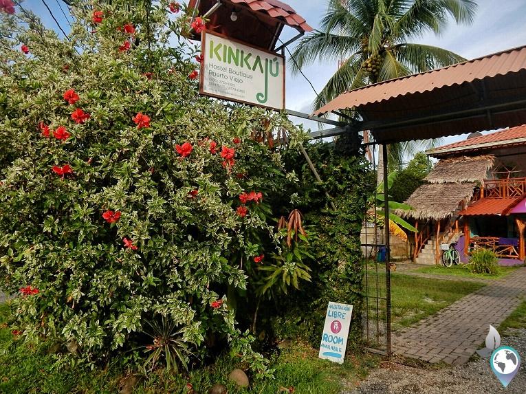 Hostel Kinkaju - Puerto Viejo