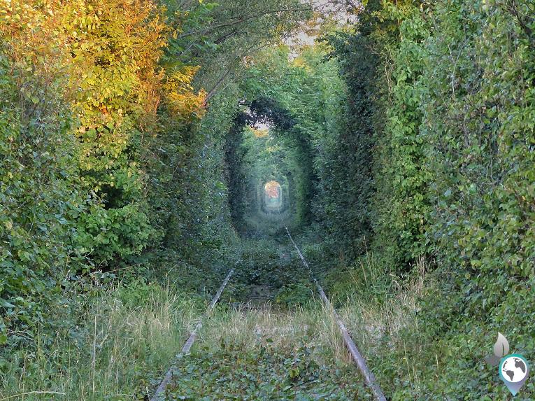 Rumänischer Lost Place – Tunnel of Love