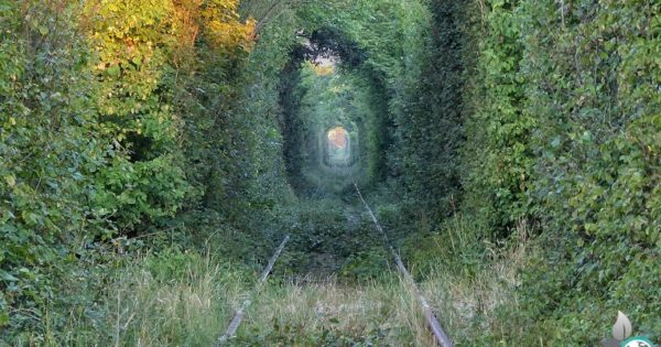 Tunnel of Love in Rumänien