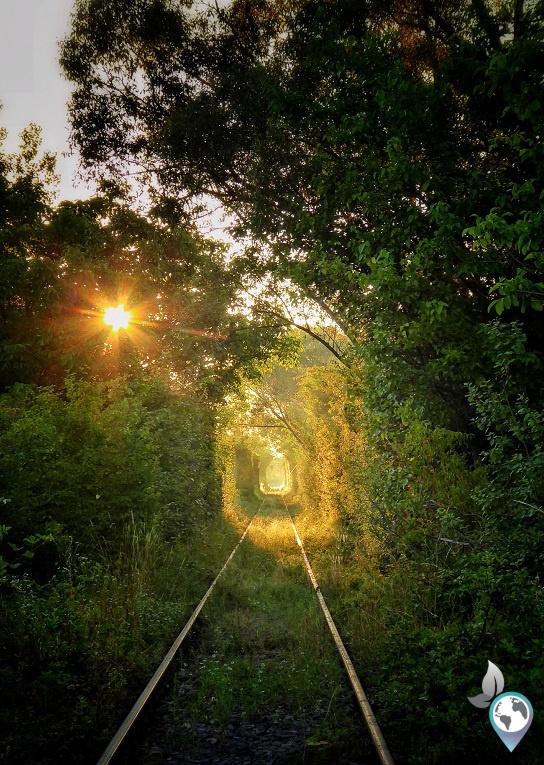 Tunnel of Love, Rumänien, Obreja, Rumänien